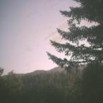 Boulder Creek Webcam